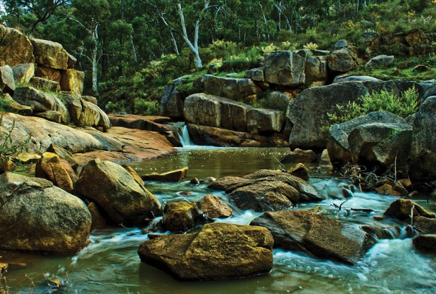 Experience Perth Hills Streams and Bushland